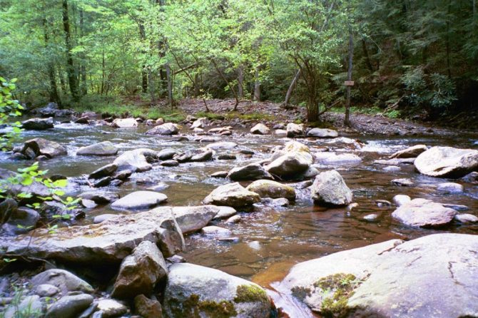 Rock-hop path across the creek