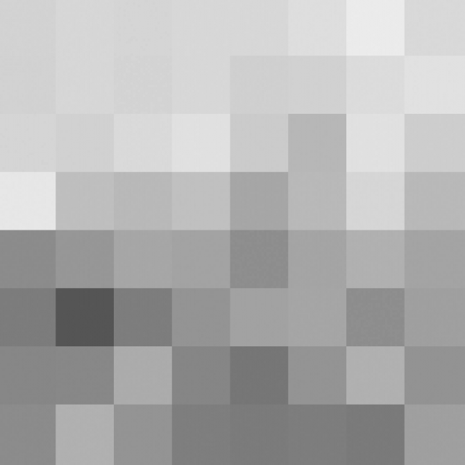 The Luminance channel - 8x8 pixel image